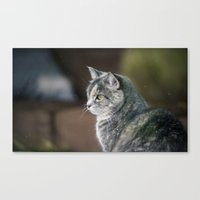 study Canvas Prints featuring Study by CrookedHeart