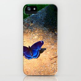 Blue Butterfly Photo Art Fine Art Mud Puddling Red Spotted Purple  iPhone Case