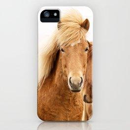 Icelandic Chestnut Horse iPhone Case