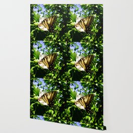 Swallowtail Butterfly Inside Hibiscus Blossom Wallpaper