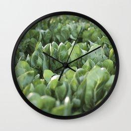 Food photography, macro photo, nature fine art, Italy, Sicily, Apulia, kitchen wall Wall Clock