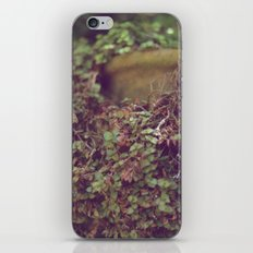 In Her Garden iPhone & iPod Skin