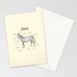 Anatomy of a Horse Stationery Cards