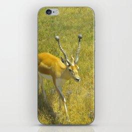 Care Free iPhone Skin