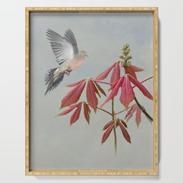 Doves and Painted Buckeye Tree Serving Tray