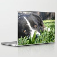 border collie Laptop & iPad Skins featuring Thoughtful Border Collie by elledeegee
