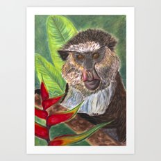 Mona Monkey Art Print