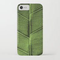 leaf iPhone & iPod Cases featuring LEAF by Ylenia Pizzetti