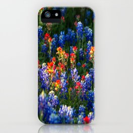 Wonderful Wildflowers - Bluebonnets and Indian Paintbrush on Spring Day in Texas iPhone Case