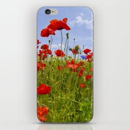 Field of Poppies | panoramic view iPhone Skin