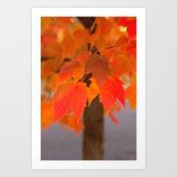 Autumnal Epitome Art Print