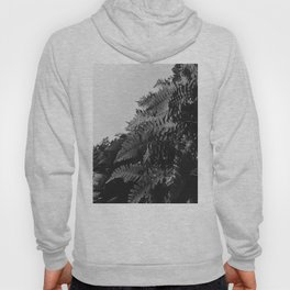 Colorless Ferns Hoody