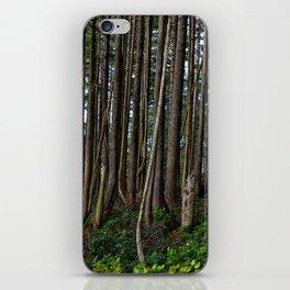Cape Flattery Trees 2 iPhone Skin