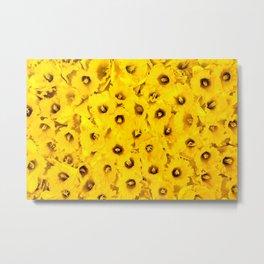 Daffodils en-masse Metal Print