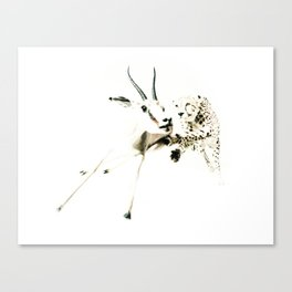 animal#02 Canvas Print