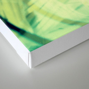 Stirrers Canvas Print