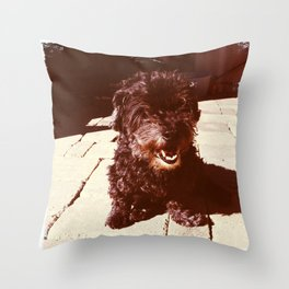 Smiling Petra Throw Pillow