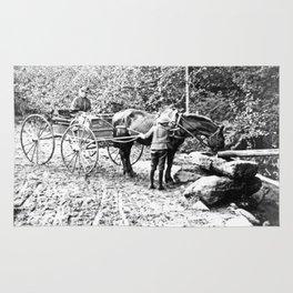Vintage Adirondacks: The Roadside Watering Trough Rug