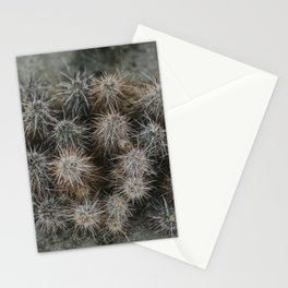 Monochrome Cactus in Joshua Tree National Park, California Stationery Cards