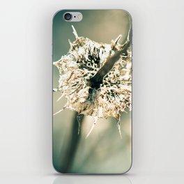 Sharp iPhone Skin