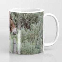 Mule in Wyoming Coffee Mug