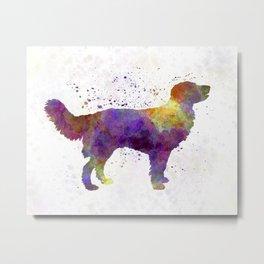 Drentsche Partridge Dog in watercolor Metal Print