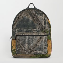 Old house with red roses Backpack