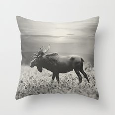 Moose Walk  Throw Pillow