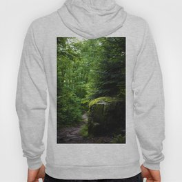 Golden & Magical Forest (Color) Hoody
