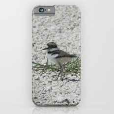 Baby Killdeer iPhone 6s Slim Case