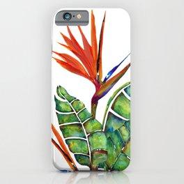 Bird of Paradise Botanical iPhone Case