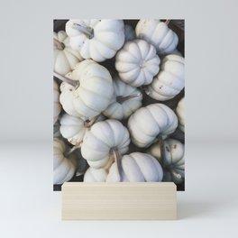 White Mini Pumpkins Mini Art Print