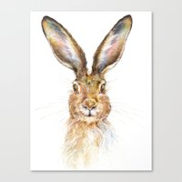 hare Canvas Prints featuring HARE by Patrizia Ambrosini