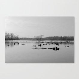 The Flip Side Canvas Print