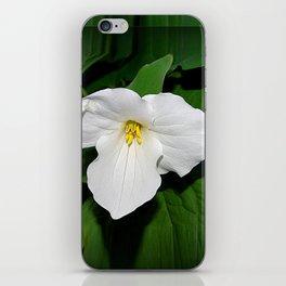 Trillium in the spotlight iPhone Skin
