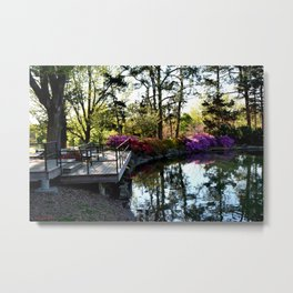Muscogee (Creek) Nation - Honor Heights Park Azalea Festival, No. 02 of 12 Metal Print