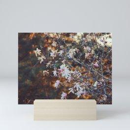 90's Magnolia Mini Art Print