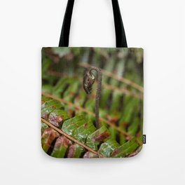 New Fern Growth Rising Above Old in the Pacific Northwest Tote Bag