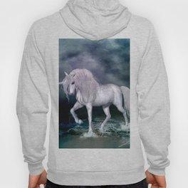 Wonderful unicorn on the beach Hoody