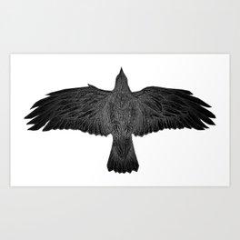 The Ravens Illumiation Art Print