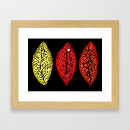 Halloween 3 Leaves Framed Art Print