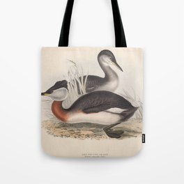 RED NECKED GREBE (2) Tote Bag