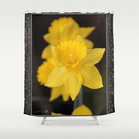 trumpet Shower Curtains featuring Trumpet Daffodil named Exception by JMcCombie