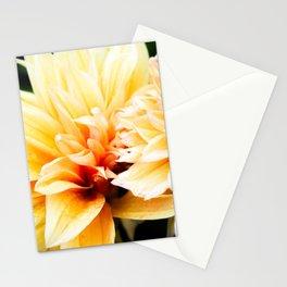 El Jardín De Doña Maco (II) Stationery Cards