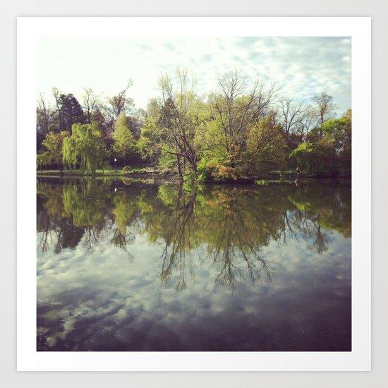 Mirror Duck Pond  Art Print