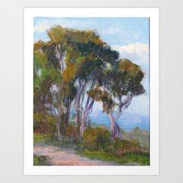 Path by the Eucalyptus  Art Print
