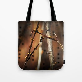 fire sunset tree buds Tote Bag