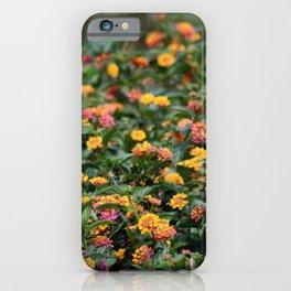 Confetti Lantana iPhone Case