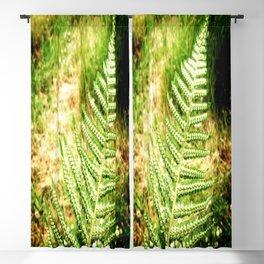 Green Fern Blackout Curtain