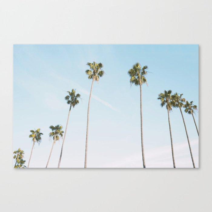 Beach Palms Leinwanddruck